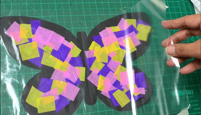 Papel contacto para la mariposa