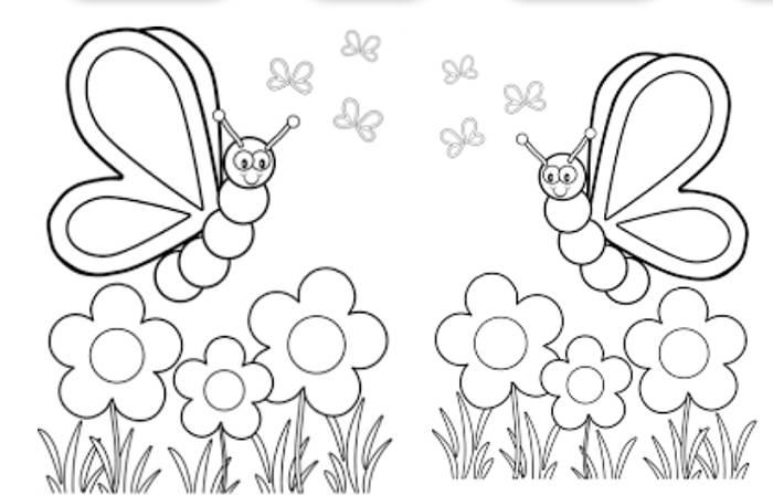 Mariposas Para Colorear Con Los Niños De La Casa Dibujos