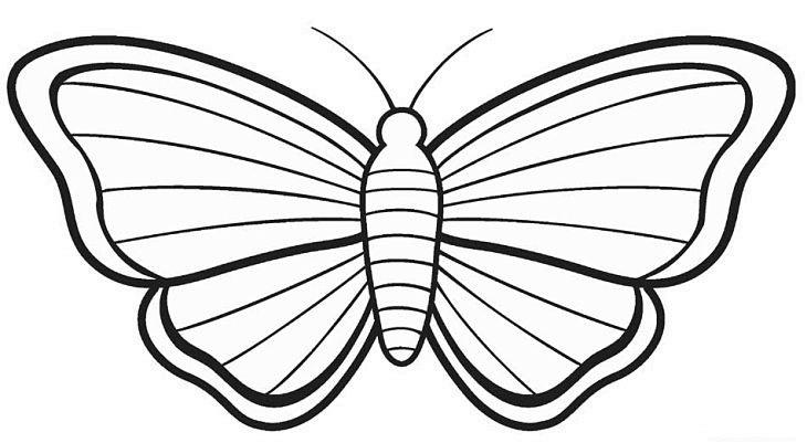 Mariposas para colorear